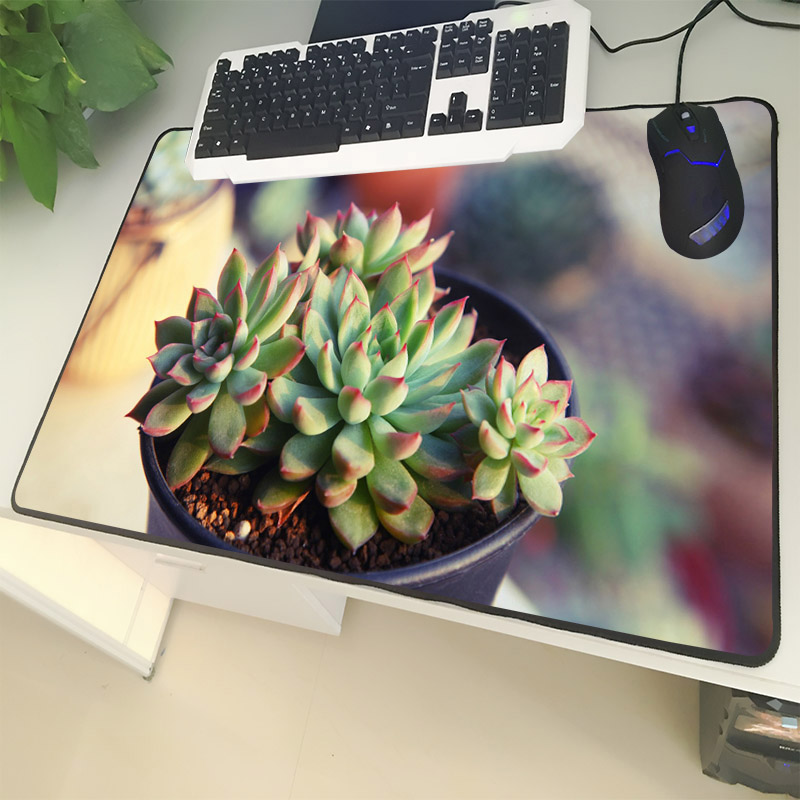 XGZ Environmentally Friendly Plant Large Size Mouse Pad Lock Green Meaty Potted Laptop PC Table Mat Rubber Universal Non-slip