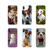 Jack Russell Terrier Pop Hond Tpu Transparant Cover Voor Lg G3 G4 Mini G5 G6 G7 Q6 Q7 Q8 Q9 v10 V20 V30 X Power 2 3 K10 K4 K8 2017(China)