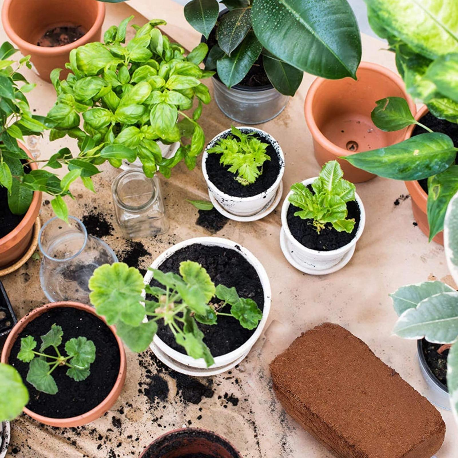 1.4 Pounds Coconut Coir Brick Peat Growing Organic Soilless Potting Garden Natural Plants Soil Nutrient Bed