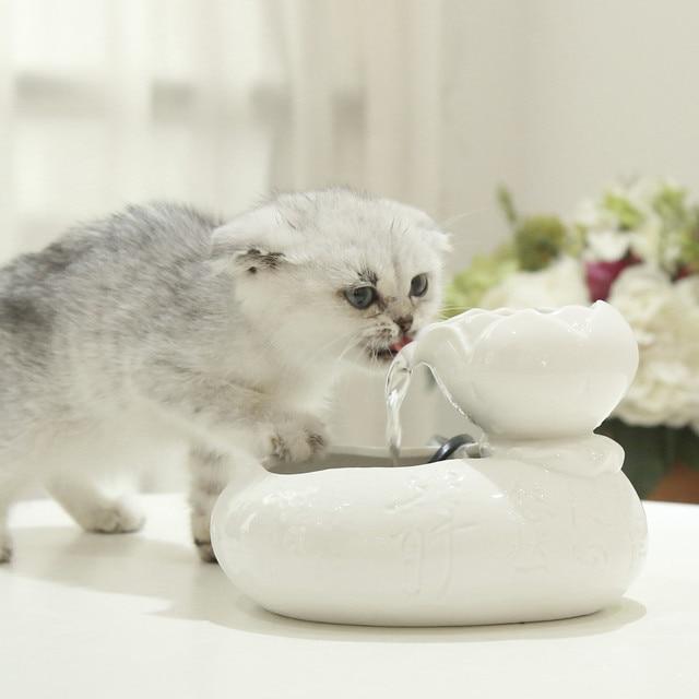 Fontaine à eau électrique pour chats