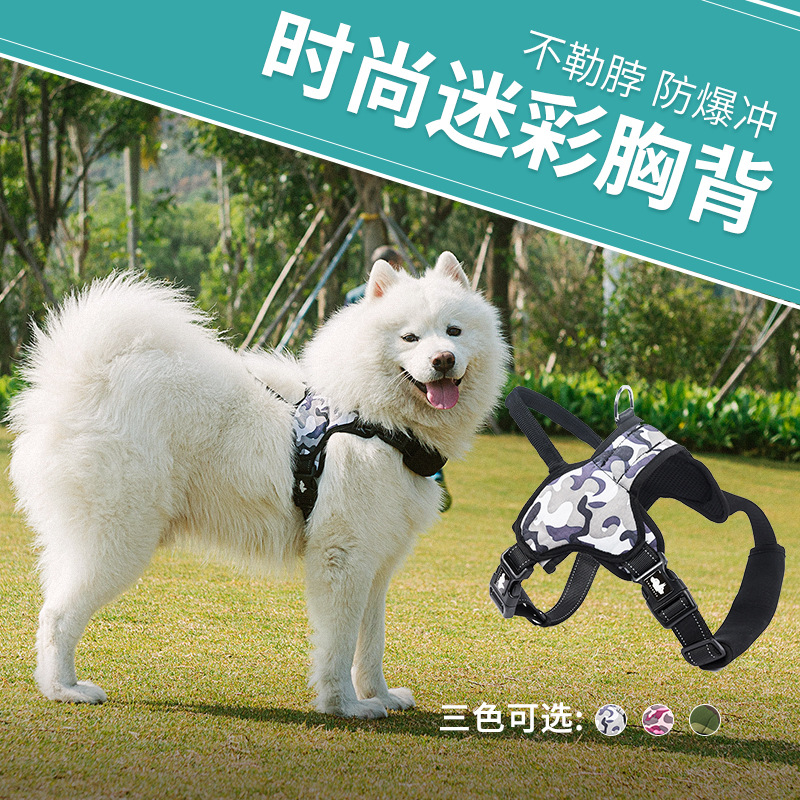 Dog Harness Hand Holding Rope Dog Chain in Large Dogs Dog Leash Golden Collar Proof Punch Strap Pet Supplies
