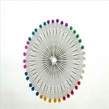 40 шт разноцветные биологические лабораторные Обучающие инструменты