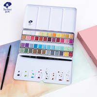 Official Paul Rubens 48 Colors Art Supplier Iridescent Glitter Shining Solid Professional Watercolor Paint for Artist Master
