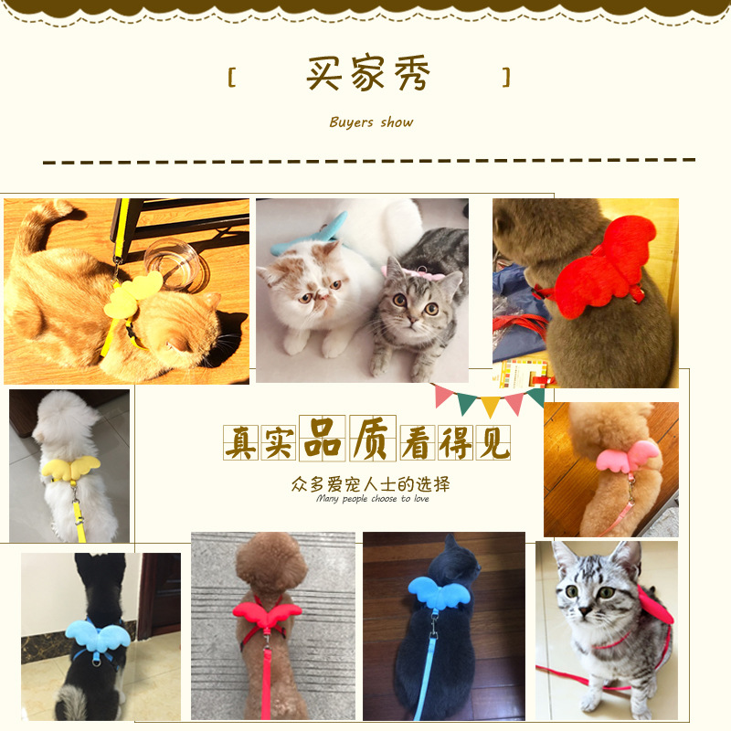Dog Hand Holding Rope Dog Rope Pet Teddy Cute Dog Chain Small Dog Puppy Wing Cat Traction Belt