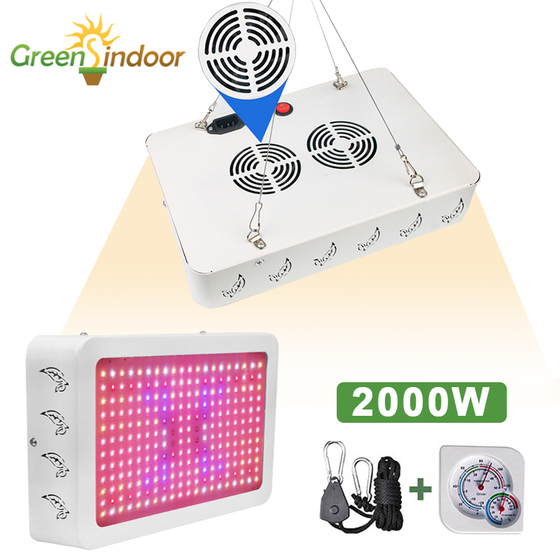 Led Grow Light For Indoor Plants 1000W Full Spectrum Grow Tent Hydroponic For Plant Flowers Seeding Growing Phyto Lamp Fitolamp