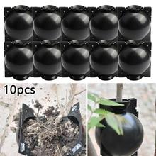 Breeding-Case Rooting-Equipment Ball-Growing-Box Sapling Propagation Plant High-Pressure