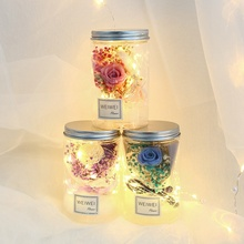 LED Rose Flower Jar Light Eternal Flower With Light String Portable Christmas Gift Romantic Valentine Day Gift valentine s day rose confession present led night light