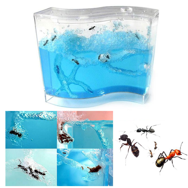 SOLEDI 73 * 32 * 78mm For Live Ants Ant Farm Pet Sand And Voucher Educational Small Pet Supplies House Children Insects Plastic