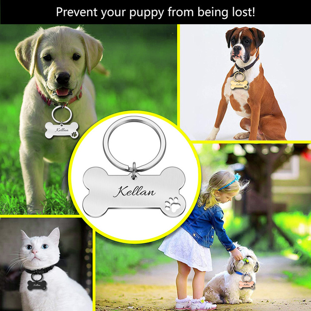 Colar personalizado pet id tag gravado animal de estimação id nome para gato filhote de cachorro cão tag pingente chaveiro osso acessórios para animais de estimação 3