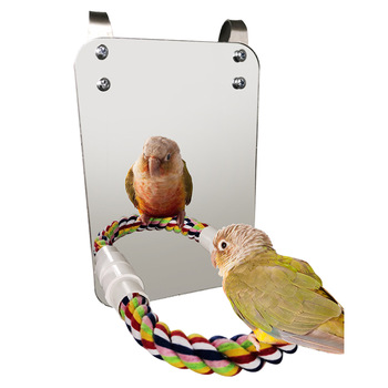 Bird Parrot Toy Chewing Bite Hanging Cage Swing Climb Rope Mirror Toys Bird Stand Pet Accessories