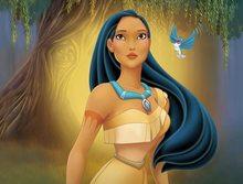 Disney Full Square 5D DIY diamond painting Pocahontas Diamond Embroidery Cross Stitch Mosaic ChrismasGift