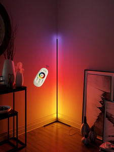 RGB LED Floor Lamp Modern Dimmer Warm white Light Remote Control Standing Reading Lamp