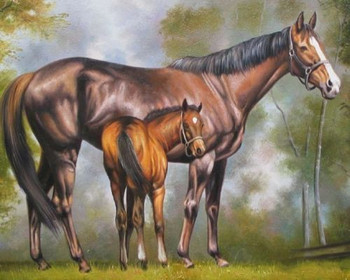 """100% Handicrafts Art Repro oil painting:Horse In canvas 24x36"""""""