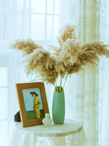 Dried Pampas Grass Natural-Plants-Decor Bunch Home-Decor Real Wedding Flower Small 10pcs/20pcs