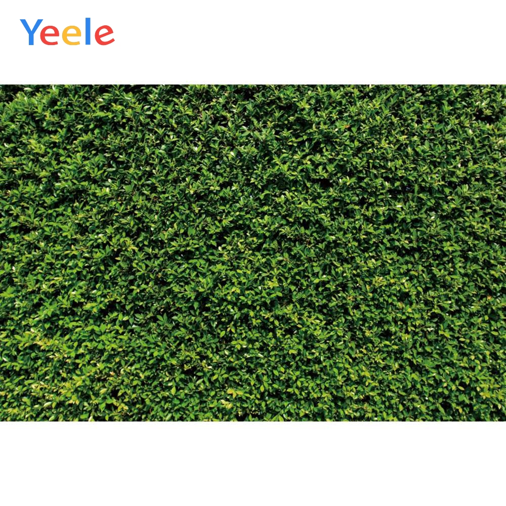 Yeele Grass Green Screen Foliage Leaves Party Decor Photography Backgrounds Customized Photographic Backdrops for Photo Studio