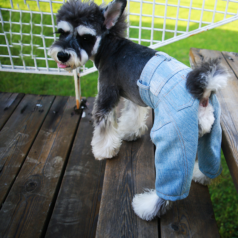 Small Dog Pet Denim Jeans Coat Jacket Cool Cat Summer Spring Puppy Jumpsuit Overall Clothing For Pitbull Animals Goods