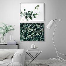 Маленькие свежие и чистые пышные зеленые растения в нордическом