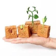 Simulação ciclo de vida de uma planta de feijão verde ciclo de crescimento modelo figuras de ação coleção ciência brinquedos educativos para crianças