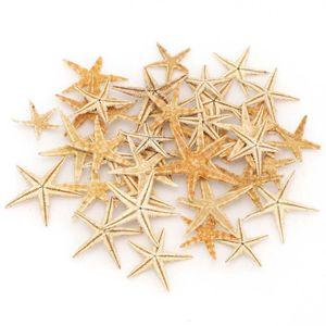 1 коробка, натуральная морская звезда, морские звезды, сделай сам, Пляжное свадебное украшение, эпоксидная смола, художественная Crafts1-5cm