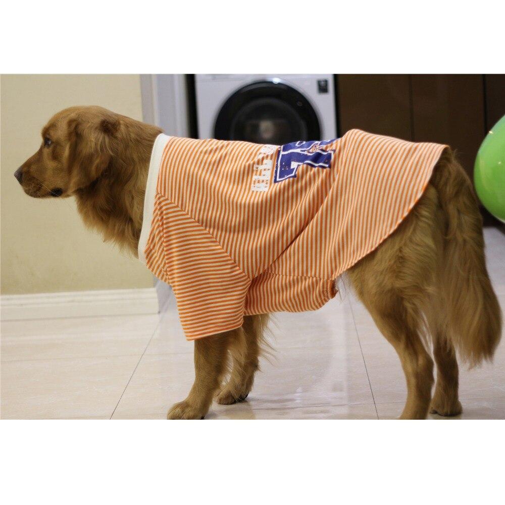 dog costume Shirt (2)