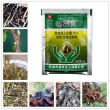 Diseases Bonsai Sterilization Soil-Disinfectant Growth-Regulator Plant Garden Fungicide