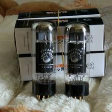 PSVANE noble voice EL34 6P3P génération directe 6L6 UK tube électronique
