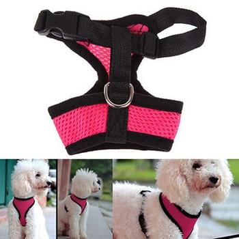 Dog Harness Collar 3