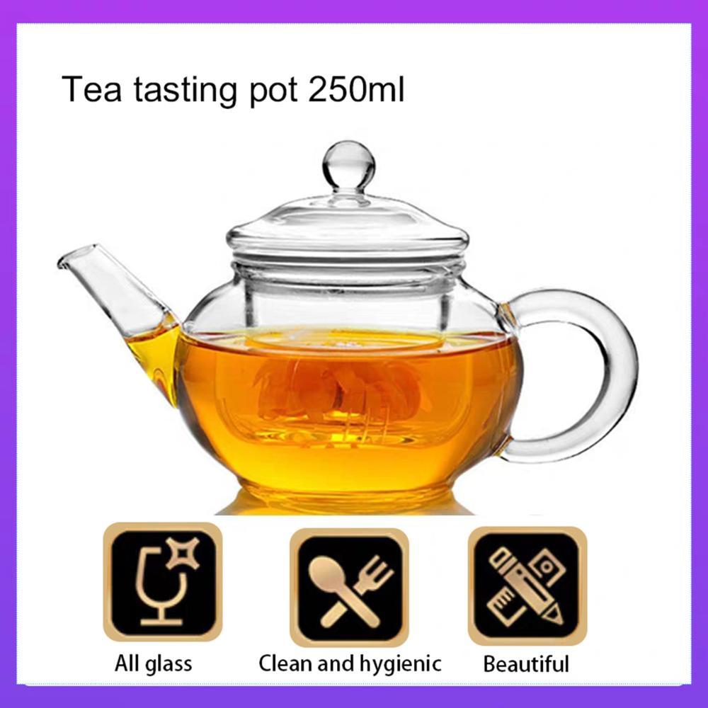 إبريق شاي شفاف مقاوم للحرارة أبريق شاي زجاجي مع إنفوسر صيني قهوة شاي بالأعشاب المزهرة ورقة وعاء عشبي 250 مللي غلاية دائمة هدية