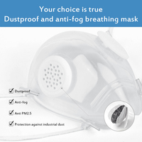 1/5 Set Reusable Mouth Mask Silicone Clear Breathing Face Mask With 10PCS Filters Dustproof Respirator Dropship Fast Ship TSLM1 3