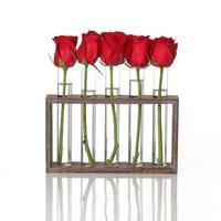 Водная посадка стеклянная ваза тестовая трубка плантатор современный цветок с ретро твердой деревянной подставкой Настольный для домашне...