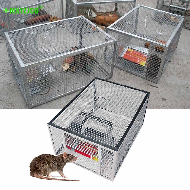 STHfficial Trampa para Ratones De Doble Orificio Trampa para Ratones Continua Autom/ática Trampa para Ratones Reutilizable Colector Rat/ón De Alto Efecto Ratones Jaula para Roedores