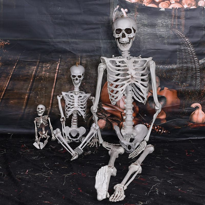 Halloween Flexible Full Life Size <font><b>Poseable</b></font> <font><b>Skeleton</b></font> Halloween Decoration Party Prop Decor Human Body Anatomy Model New 2019 40cm image