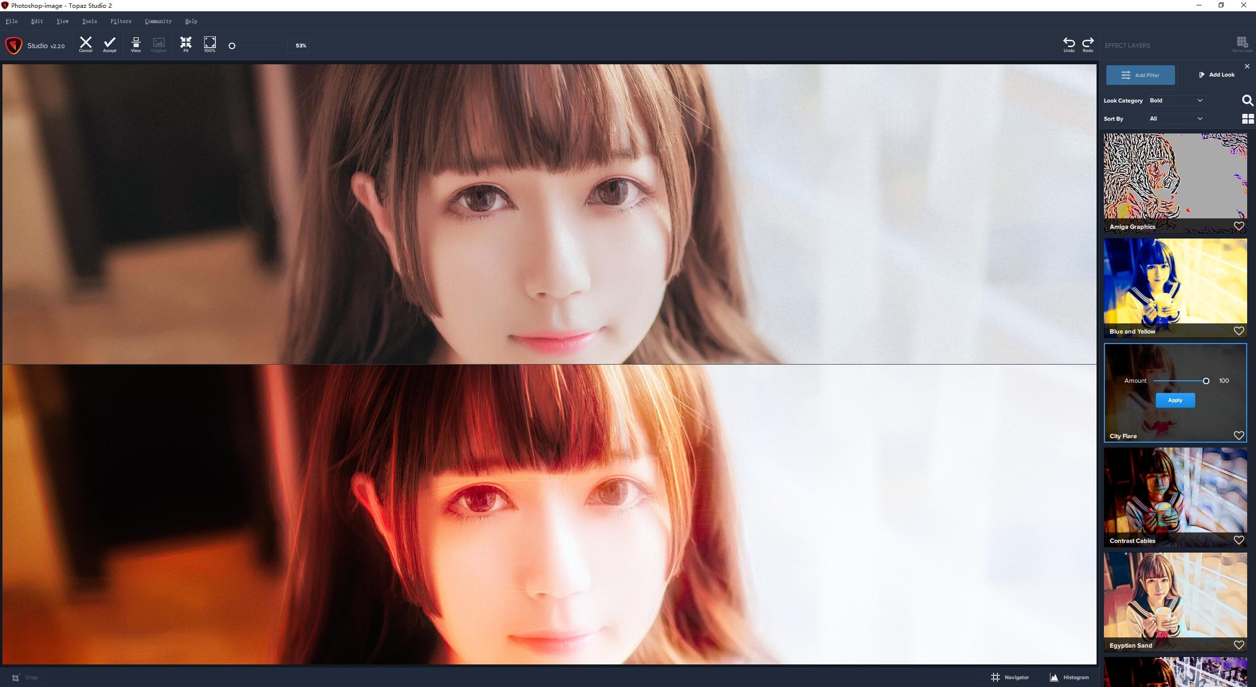 VIP资源-创意照片编辑软件 Topaz Studio 2.3.2 WIN 中文汉化版(6)