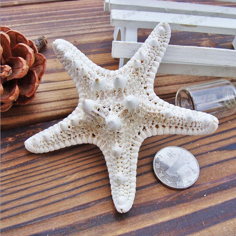 1pcs Mini Starfish Craft Decoration Natural Mediterranean Sea Stars DIY Beach Cottage Kids Bedroom Living Room Decor
