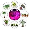 Двухголовый светодиодный светильник премиум класса 10 Вт Настольный зажим Светодиодная лампа для растений с 360 поворотным гибким гусином дл...