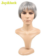 Joy&luck Fashion Men's Grey Wig Short Synthetic Straight Hair Wigs for Man(China)