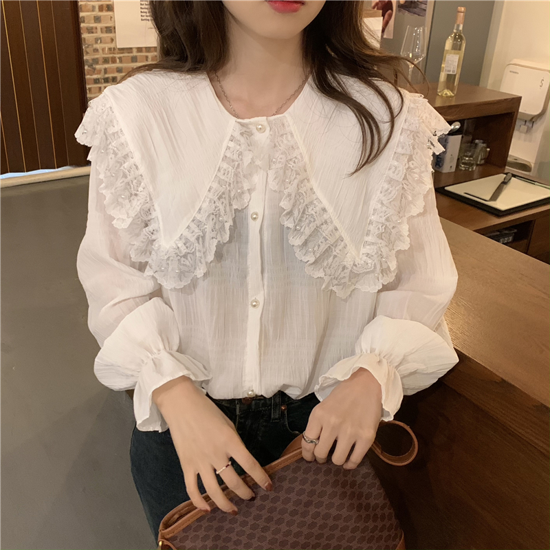 H54d254c877884cb4a6dbed8ccd17182de - Spring / Autumn Butterfly Lace Collar Long Sleeves Loose Solid Blouse