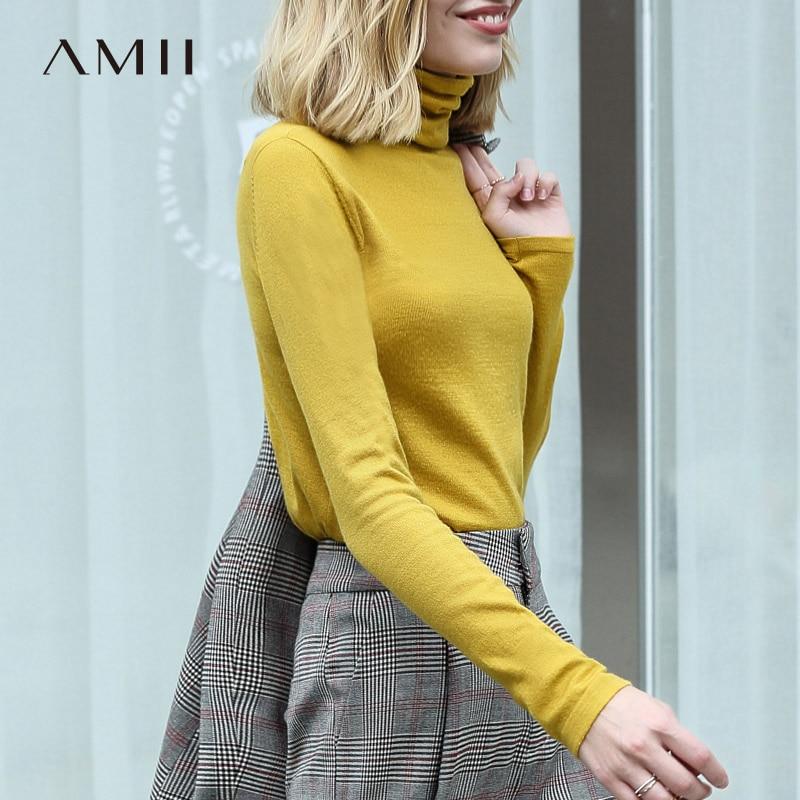 Amii Spring Women's Turtleneck Solid  Full Sleeve Wool Slim Fit Sweater Women's Large Knit Sweater Tops 11820098