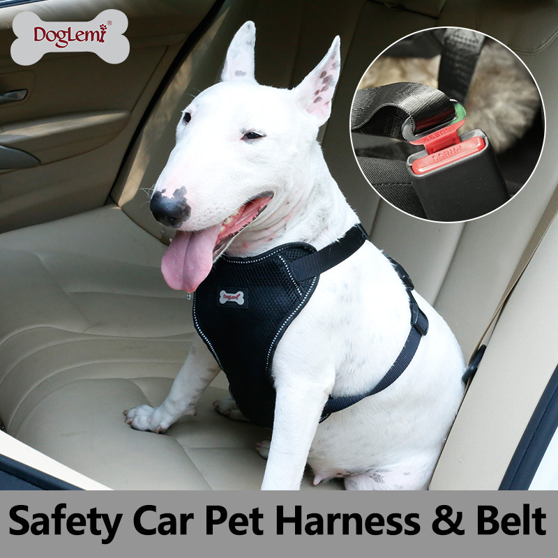 Comfortable Massage Pet Car Mounted Safety Belt Car Tied Dog Traction Rope Car Industry Proof Punch Gou Bei Dai Set