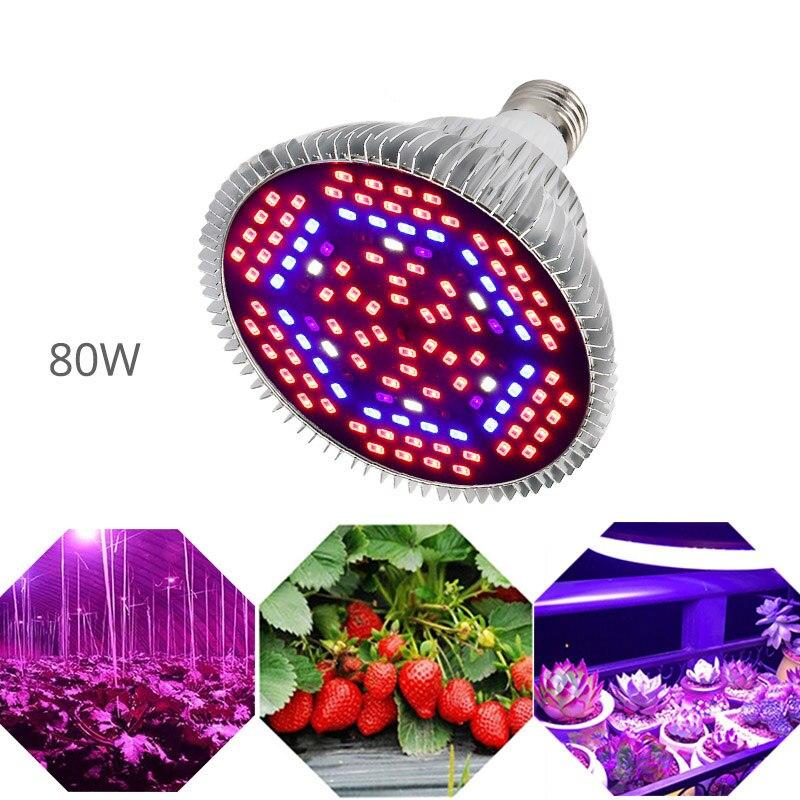 LED Grow Light Full Spectrum 6W 10W 30W 50W 80W Red Blue UV IR Led Growing Lamp For Hydroponics Flowers Plants Vegetables