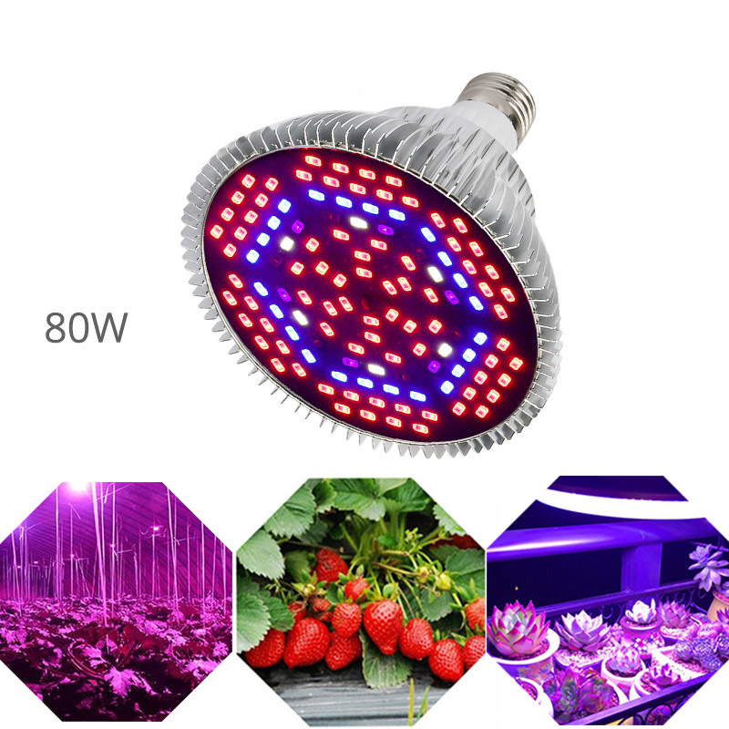 LED Grow Light Full Spectrum 6W 10W 30W <font><b>50W</b></font> 80W Red Blue UV IR Led Growing Lamp For Hydroponics Flowers Plants Vegetables image