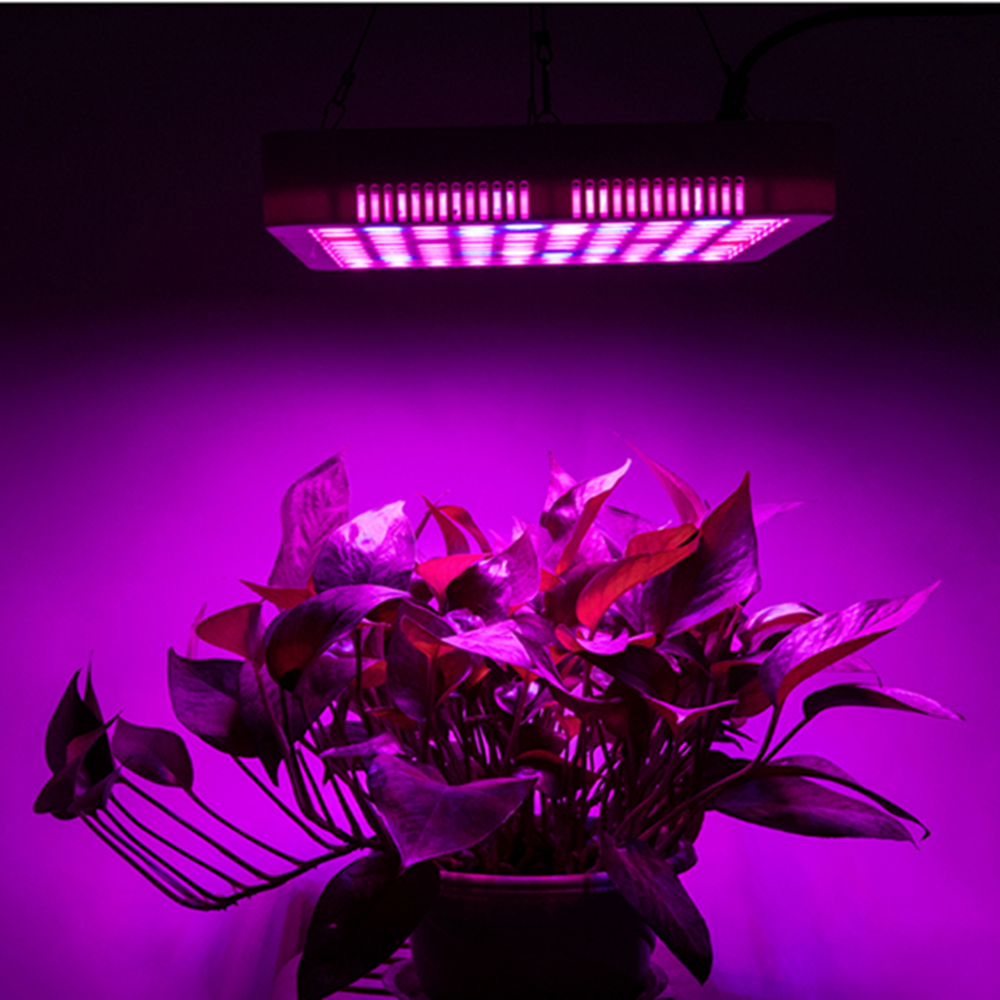 Plants LED Full Spectrum Greenhouse 300W LED Growth Lamp Ultraviolet Lamp  Plant Flower Lamp Greenhouse Plant Growth Lamp