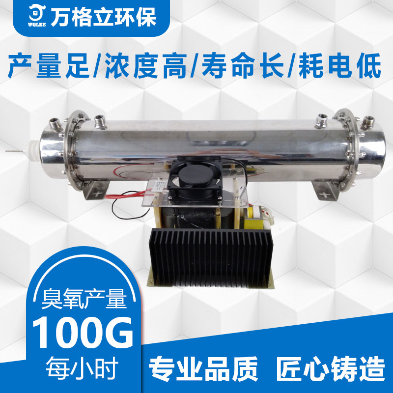 100g/h Honeycomb Tube Ozone Generator Accessories Exhaust Gas Deodorization Waste Gas Industrial Water Treatment Equipment