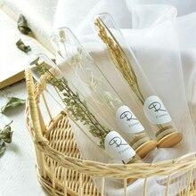 New Ins Dried Flower Glass Cover Decoration Preserved Fresh Babys Breath Test Tube Plant Specimen Holder Gift