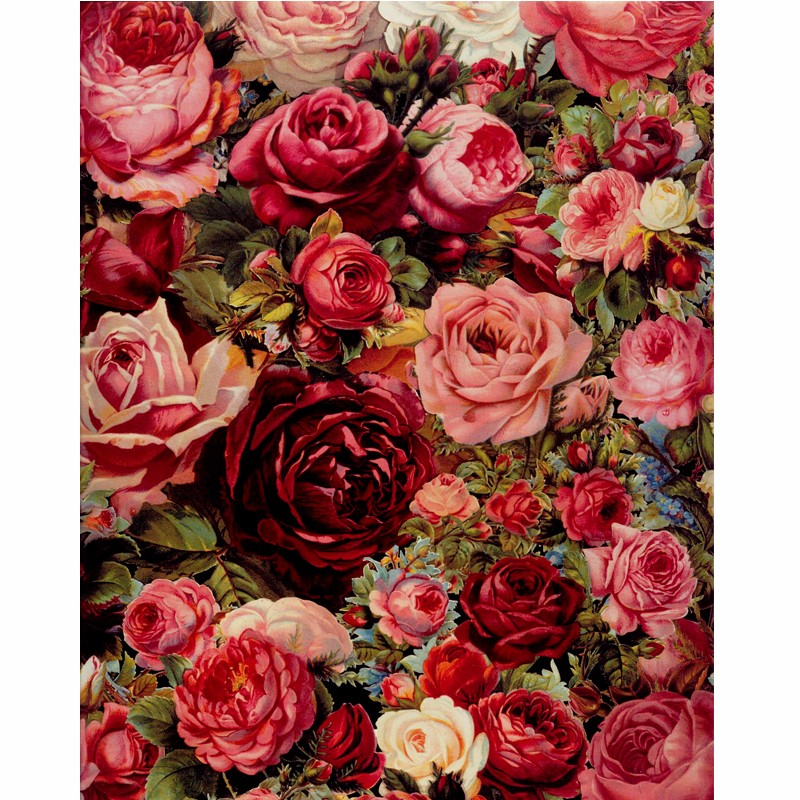 Frame Rose Flowers DIY Painting By Numbers Draw On Canvas Coloring By Number Mordern Wall Art Picture For Modern Home Decoration