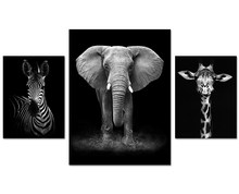 three pcs elephant black and white africa animal Canvas Oil Printings Pictures for Living Room Office Work Bedroom Home Decor(China)