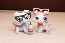 Figurines à collectionner pour animaux domestiques, 2 pièces, nouveauté, Collie Ooak, personnalisé, Rare, avec 5 Accessoires, collier de lunettes, boisson