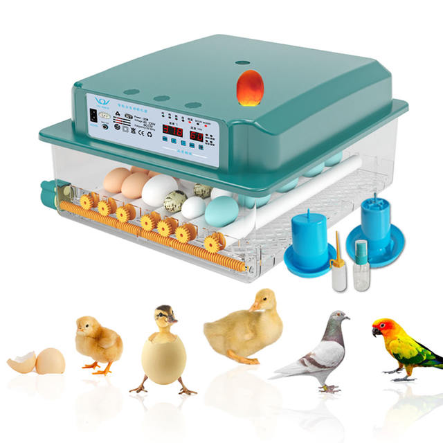 Fully Automatic Farm Chicken 36 Egg Incubator