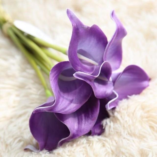 B Purple Calla