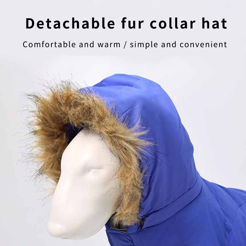 Dog-Clothes-with-Hat-for-any-dog-breed